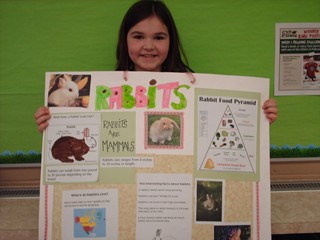 Second Grade Sunshine January 2012 Animal Research Projects
