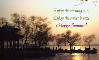 Funny Pictures Gallery: Summer quotes, cute summer quotes ...