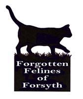 www.forgottenfelinesofforsyth.org