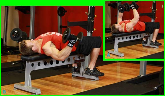 Chest exercises for Body Builder
