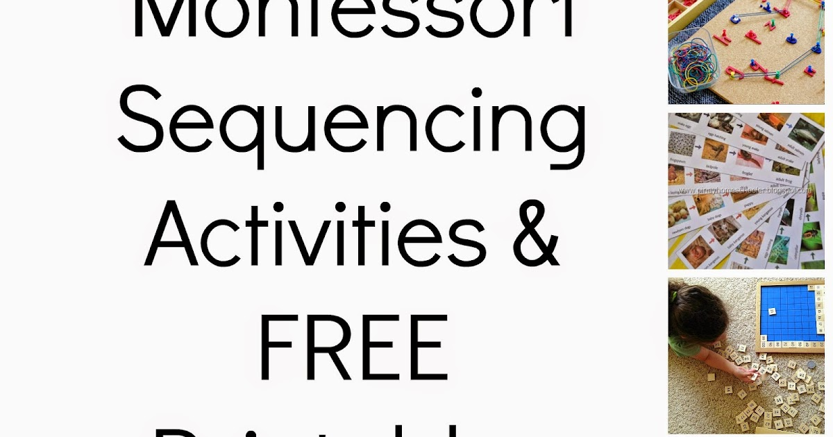 photo relating to Free Printable Sequencing Cards titled Montessori-impressed Sequencing Things to do Cost-free Printables