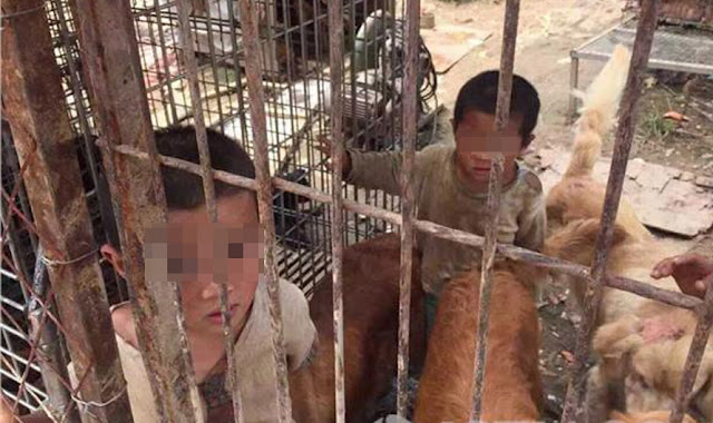 Chinese Siblings Discovered Eating From Trash Piles; Locked And Living In With The Dogs Inside The Dog Cage!