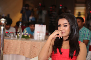 Actress Catherine Tresa Unveils Intex Air Conditioners  0340.jpg