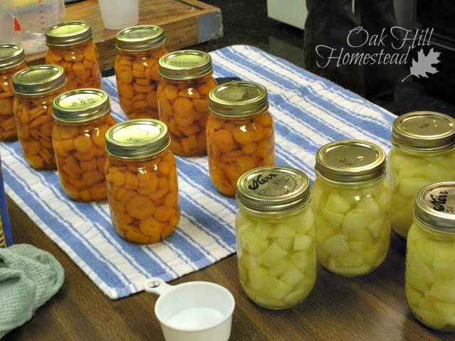 Pressure-canned carrots and water-bath canned apples.
