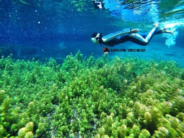 tempat wisata hits Sumber Sirah di malang
