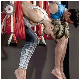 formacion-online-de-aeroyoga-aero-yoga-aereo-pilates-cursos-clases-seminarios-talleres-aerial-aerien-columpio-hamac-hamaca-swing-trapeze-acro-acrobatic-silks-danza-aerea-teacher-training-online-educacion-a-distancia-escuelas-tendencias-negocios