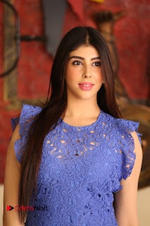 Actress Aditi Singh  Pictures in Short Dress at Movie Interview  0004