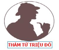 Công ty thám tử Việt Nam