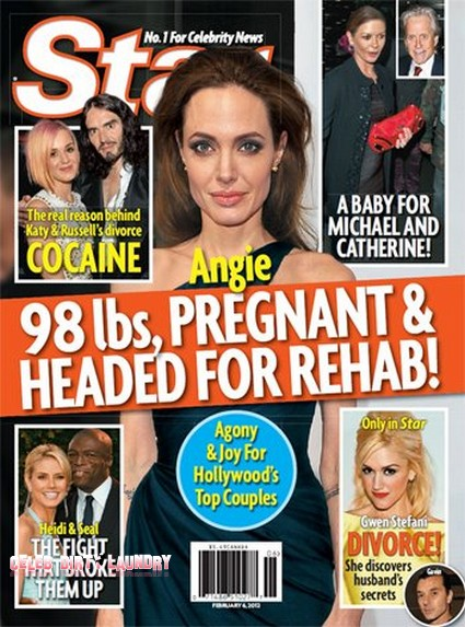 Angelina Jolie Pregnant, Weighs 98 Pounds, And Is Headed For Rehab?