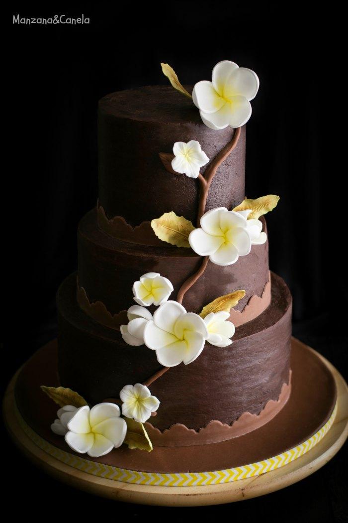 Juego De Cake Shop