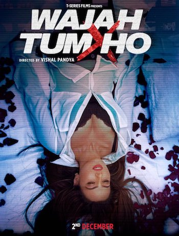 Wajah Tum Ho 2016 Hindi pDVDRip 350MB Download