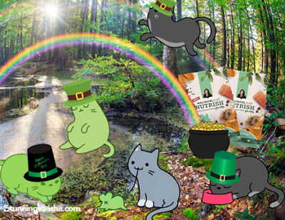 CK and the Leprecats—Quest 4 Kibble #ChewyInfluencer