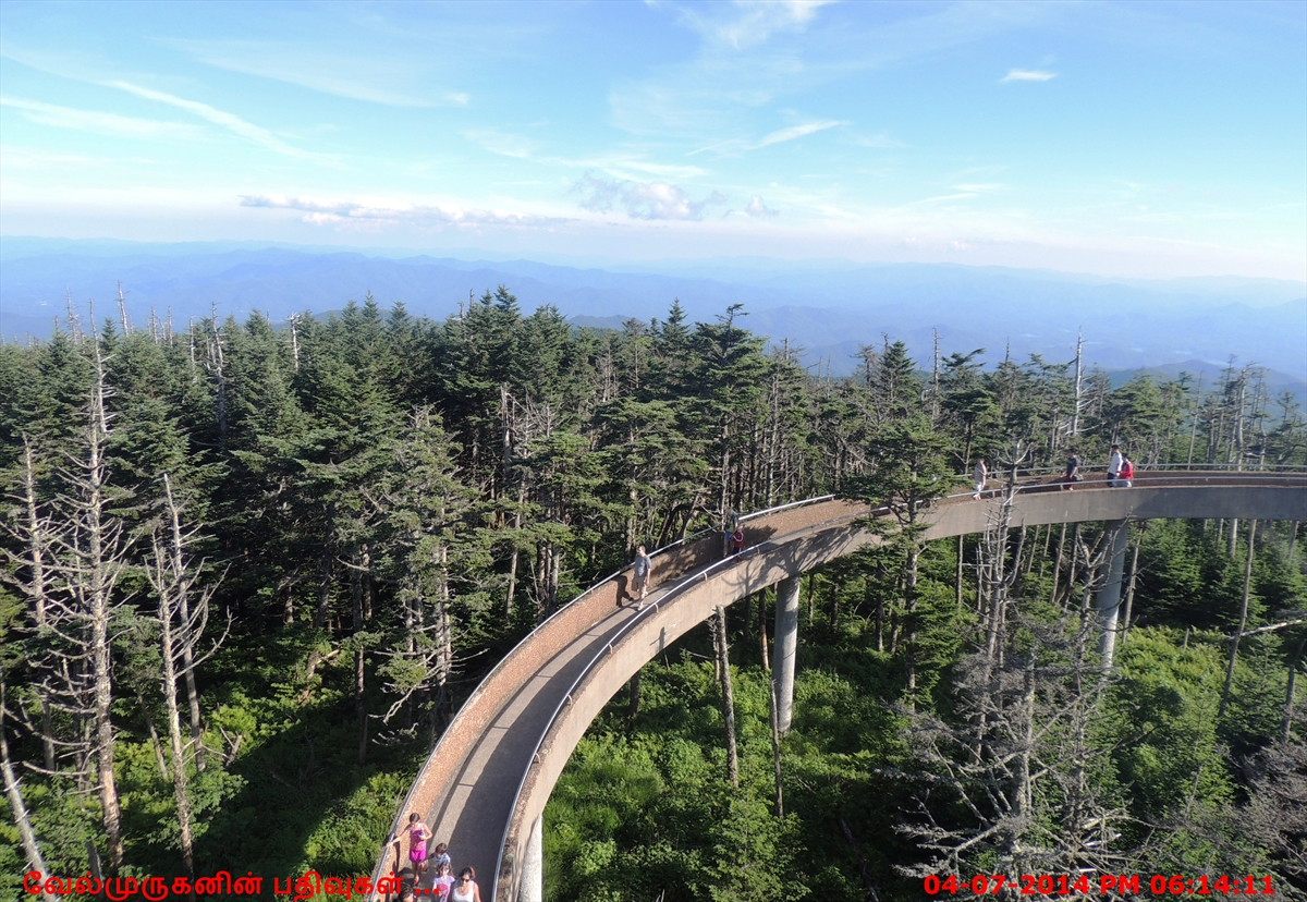 Clingmans Dome Trail - Exploring My Life