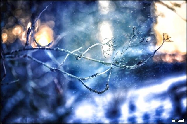 khung cảnh tháng 12