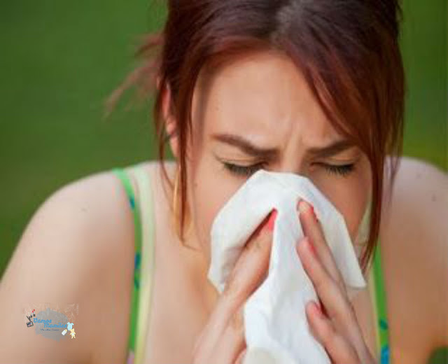 Mitos e Verdades sobre gripe e resfriado