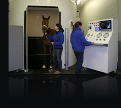 India. Equine Hyperbaric Oxygen Therapy Chamber