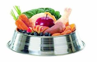 Complementos En La Alimentacion De Tu Perro