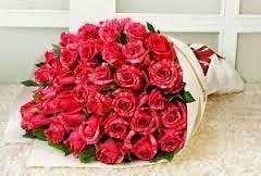jual bunga mawar