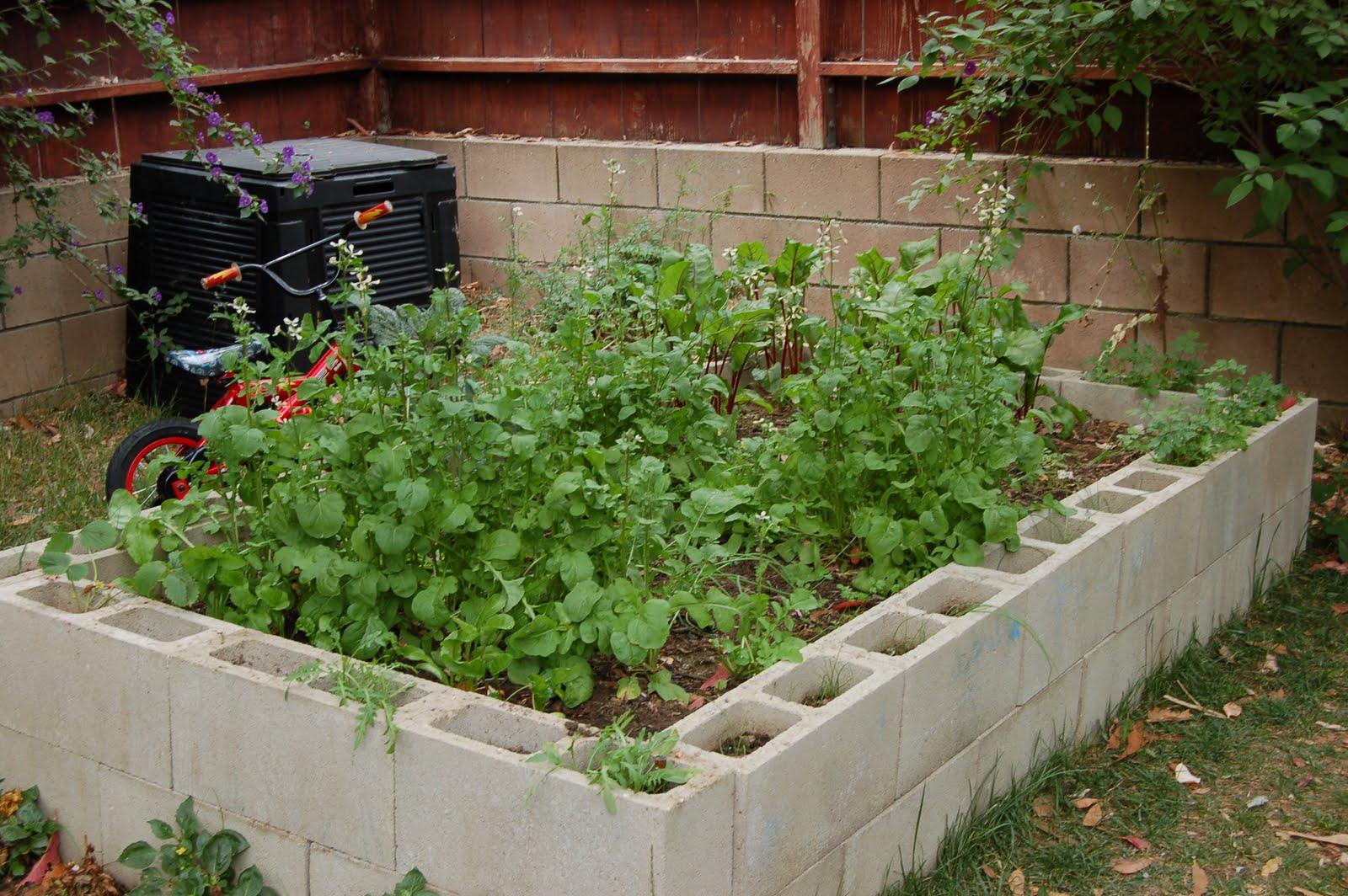 au jardin forum de jardinage
