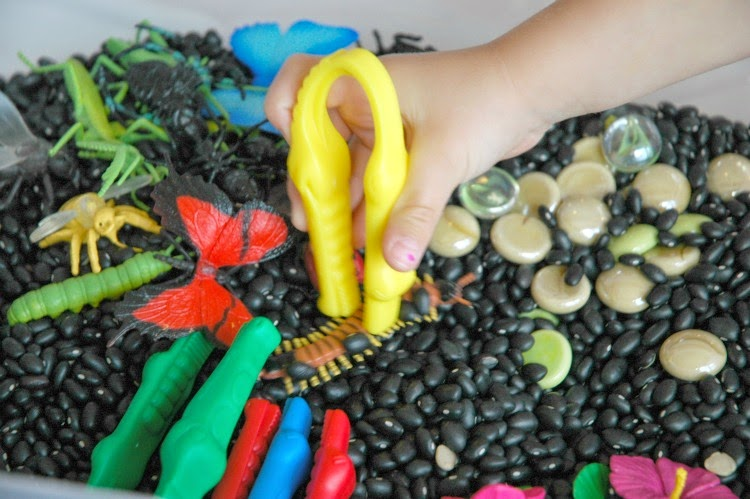 Insect Sensory Bin What Can We Do With Paper And Glue