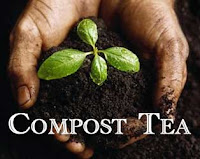 come-fare-il-compost-tea-per-la-cannabis