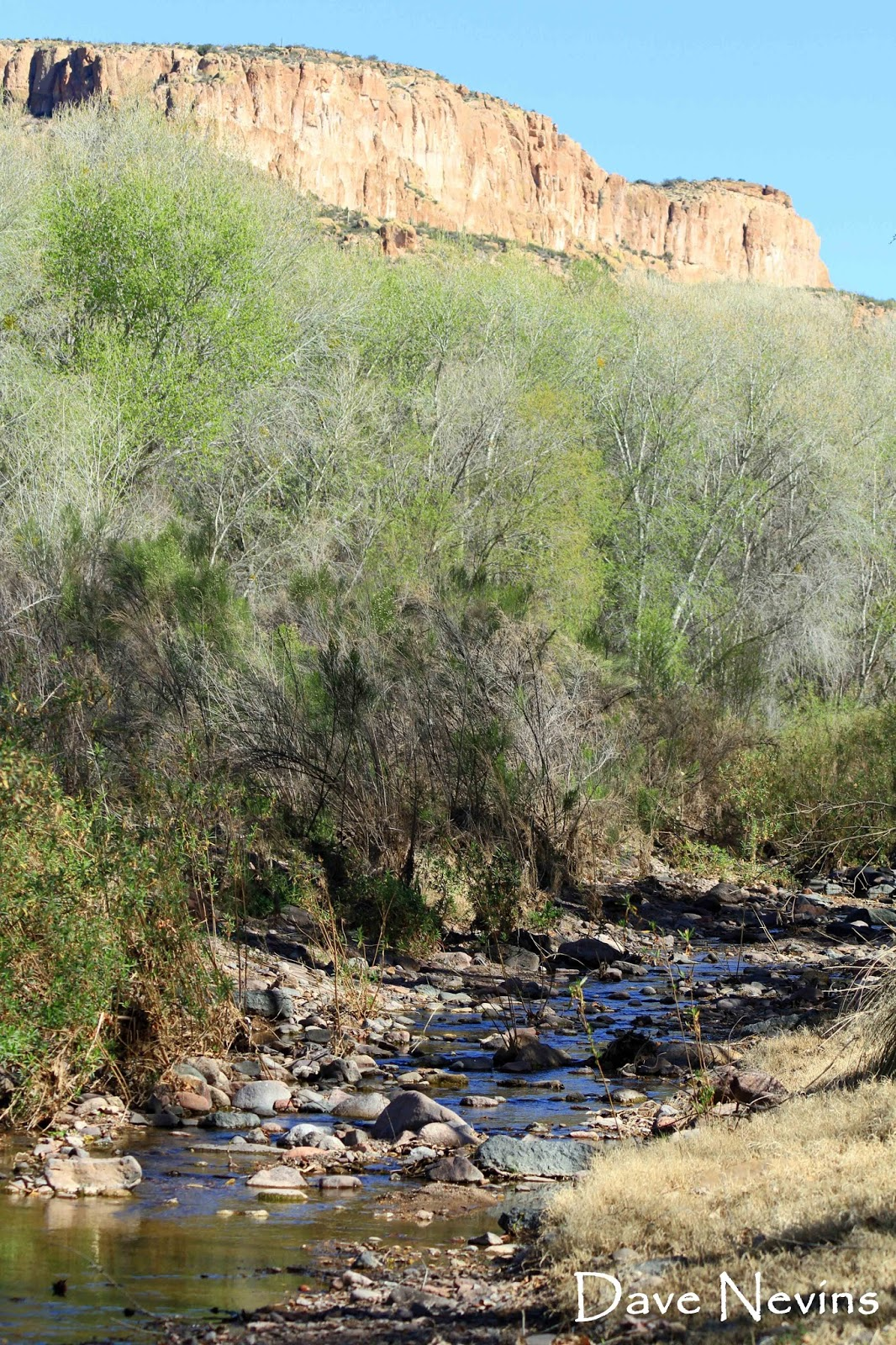 no limits aravaipa canyon a brief appearance by edward abbey aravaipa canyon wilderness is a special place for me and yes there will be more aravaipa s and blog posts in the future