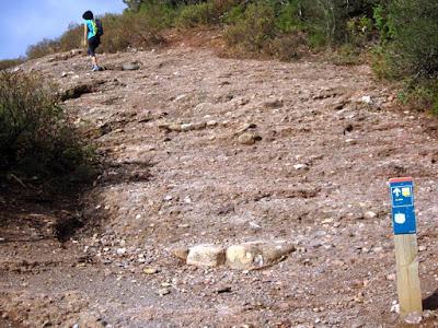 Camí dels Monjos a La Mola