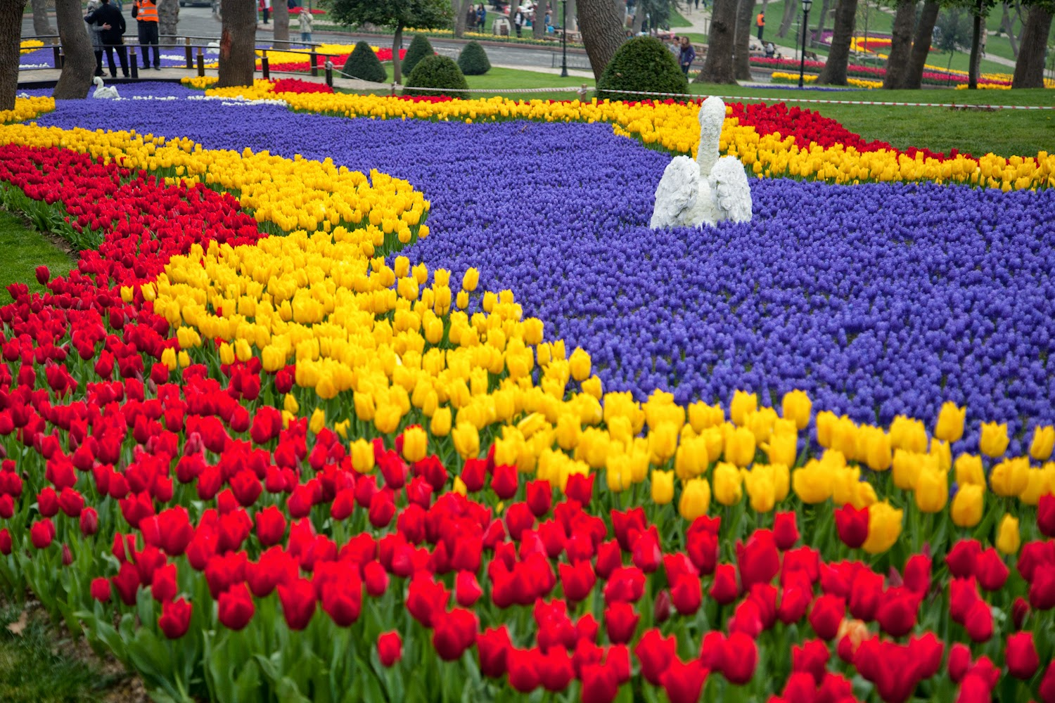 Beauty In Photography Tulip Festival In Emirgan Park