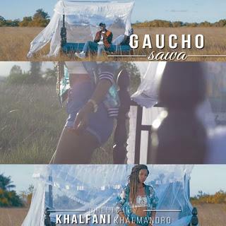 Gaucho - Sawa