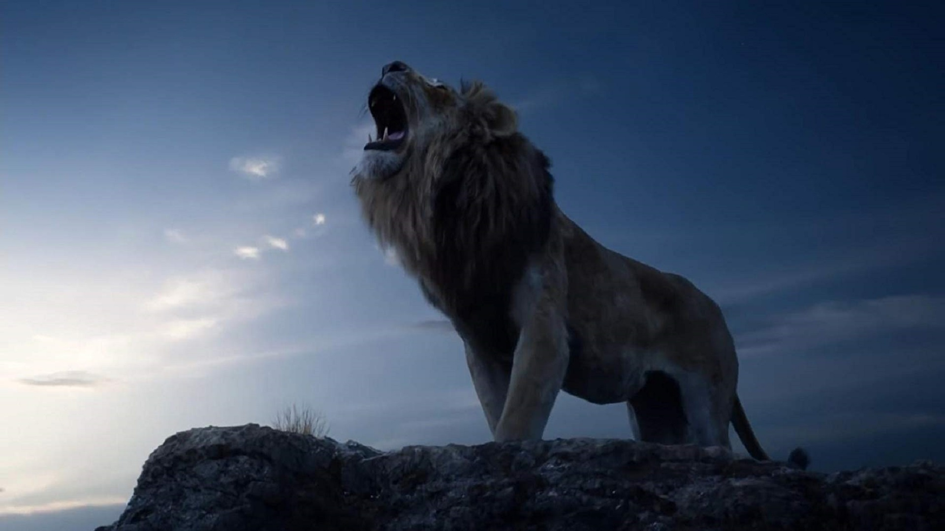 The lion king 2019 wallpapers backgrounds - Lion king wallpaper ...