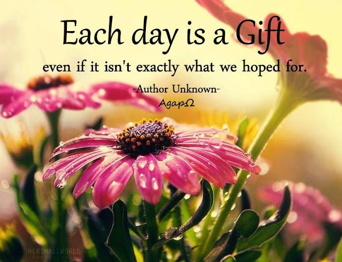 Each day is a gift even if it isn't exactly what we hoped for.