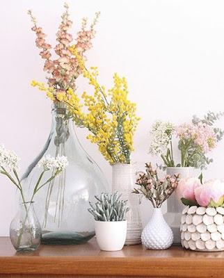 Plantas y flores aportan color y alegría