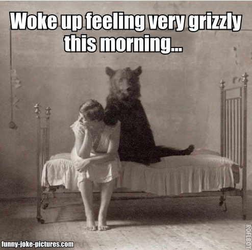 Woke up feeling very grizzly this morning