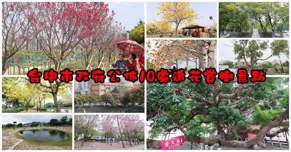 台中市政府公佈10處追花賞樹景點,全年都能欣賞黃綠紅繽紛色彩