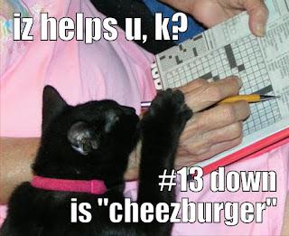 Cat Helping