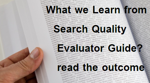 What we Learn from Search Quality Evaluator Guide? read the outcome