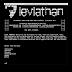 Leviathan - Wide Range Mass Audit Toolkit