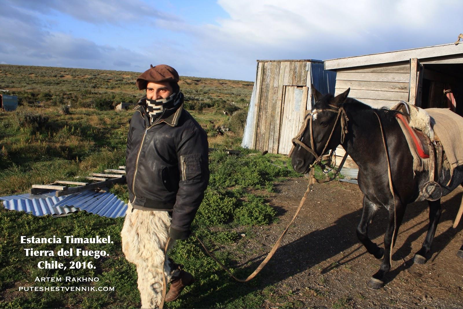 Гаучо ведет лошадь