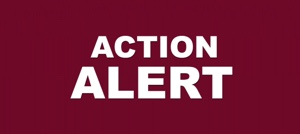 ACTION ALERT in bold white letters on burgundy background