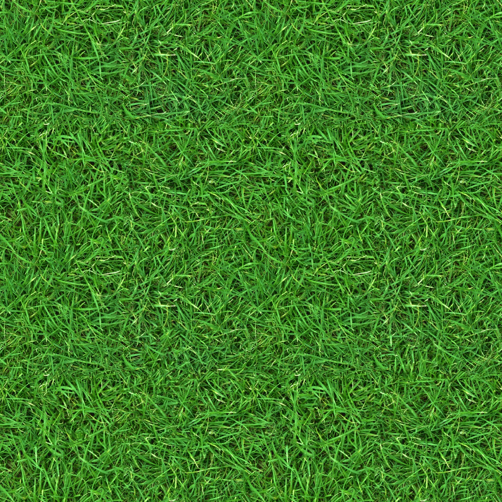 (GRASS 2) seamless turf lawn green ground field texture