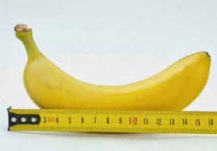 buah untuk pembesar penis alami