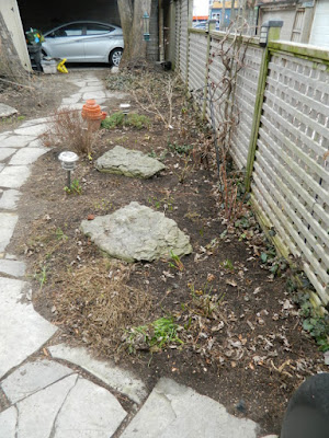 Leslieville Toronto Spring Back Yard Cleanup After by Paul Jung Gardening Services--a Toronto Gardening Company