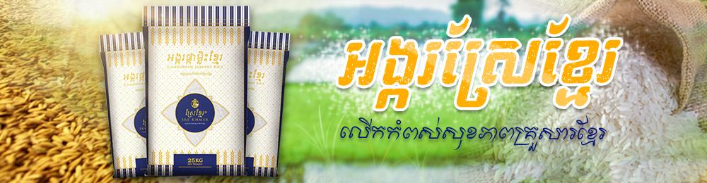 eCam – Rice 1000×260