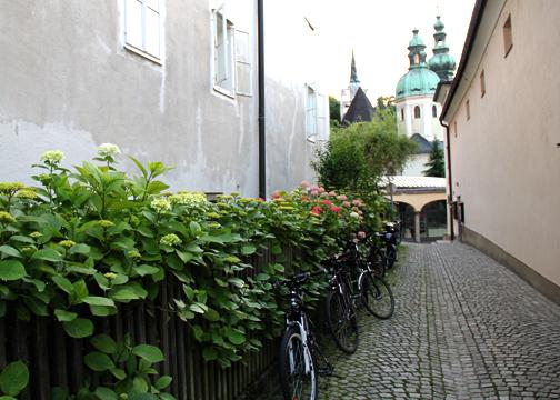 Salzburg Alley   Linzer Lane