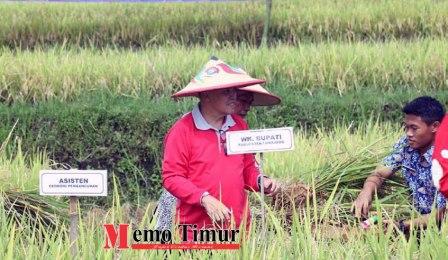 dr. Buntaran Supriyanto