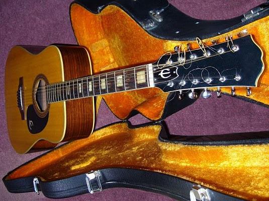 Gitar 12 senar - Jenis-Jenis serta Variasi Gitar dan Karakteristiknya