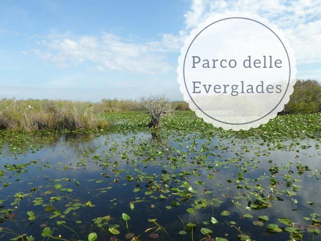 Cosa fare nel Parco delle Everglades: gli stagni