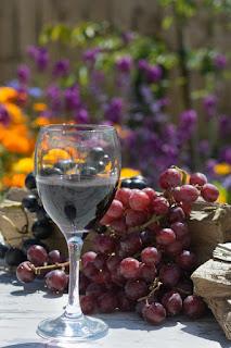A uva: raiz de todos os benefícios