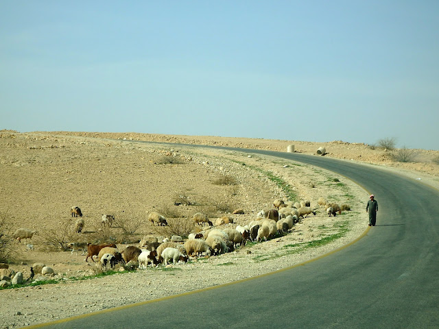 kings highway jordania