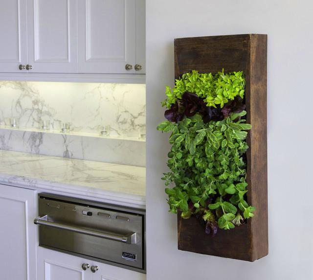 Výsledok vyhľadávania obrázkov pre dopyt vertical garden in kitchen